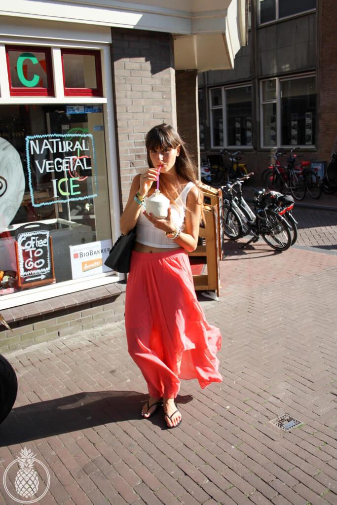a trip to amsterdam טיול באמסטרדם